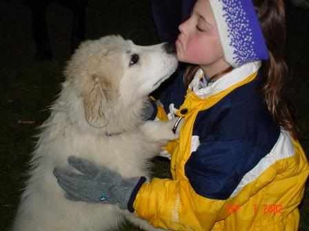Pyr Pup and Bonding